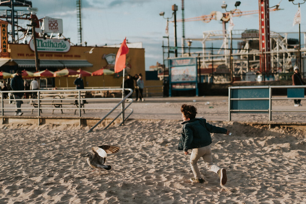 Young boy runs after seagulls during family session at coney island beach